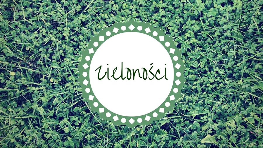 zielonosci-czyli-o-tanich-zielonych-roslinkach-idealnych-wesele