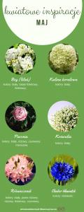 kwiaty w maju