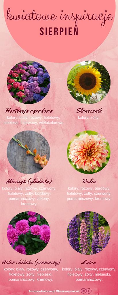 kwiaty w sierpniu