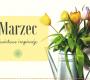 kwiaty-w-marcu